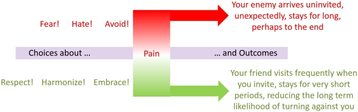 Choices about Interacting with Pain